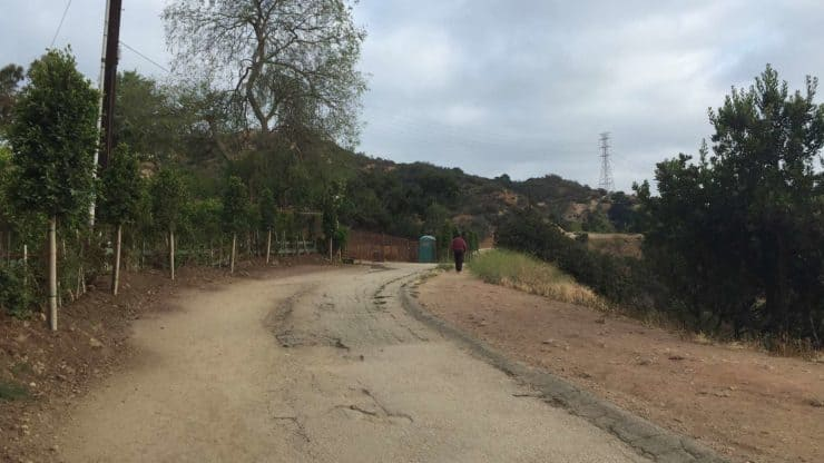 RUnyon Canyon Road
