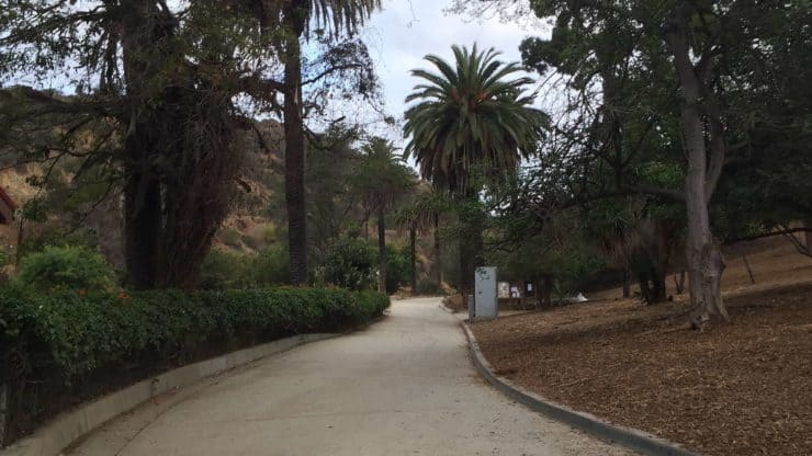 Sidewalk In Runyon Canyon Park