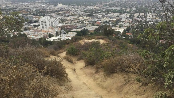View Of La From Westridge Hiking Trail