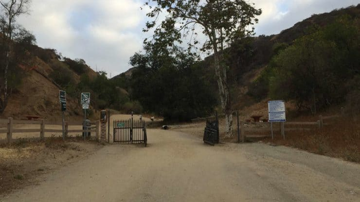 Trail In Runyon Canyon Park