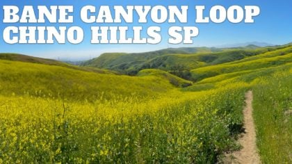 Bane Canyon Loop Trail – Chino Hills State Park