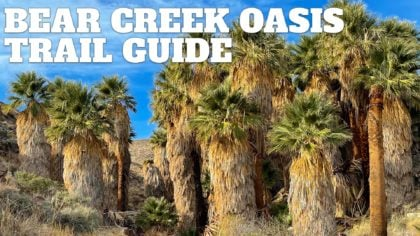 Bear Creek Oasis Trail Guide