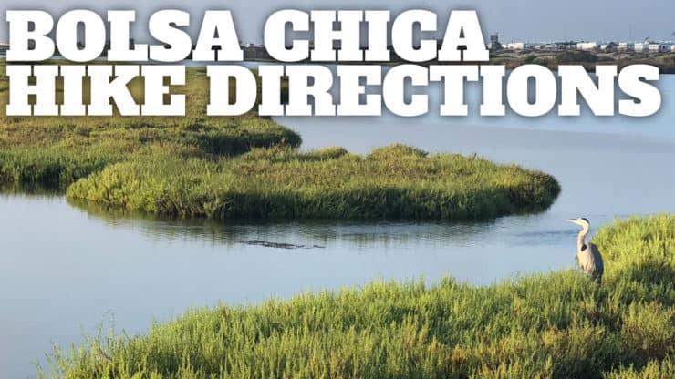Bolsa Chica Ecological Reserve Hike