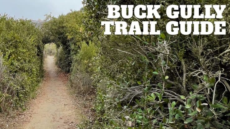 Buck Gully Trail Guide