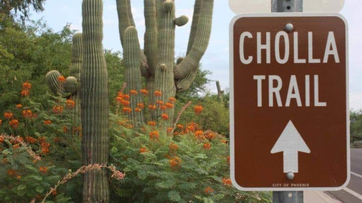 Cholla Trail sign