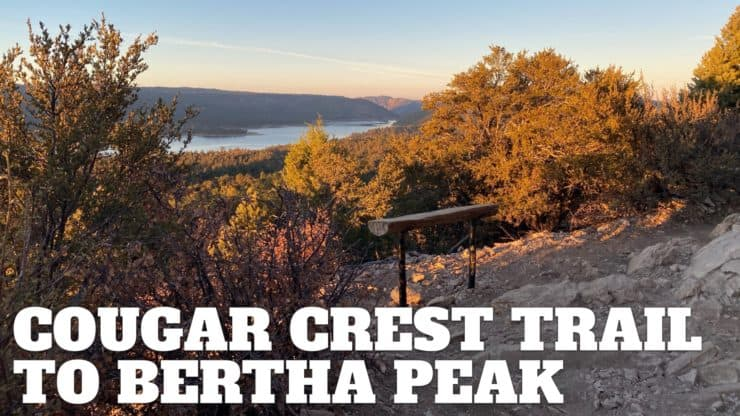 Cougar Crest Trail to Bertha Peak Hike Guide
