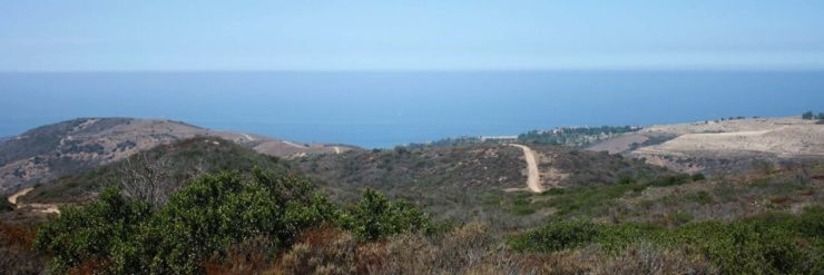 Crystal Cove Hike
