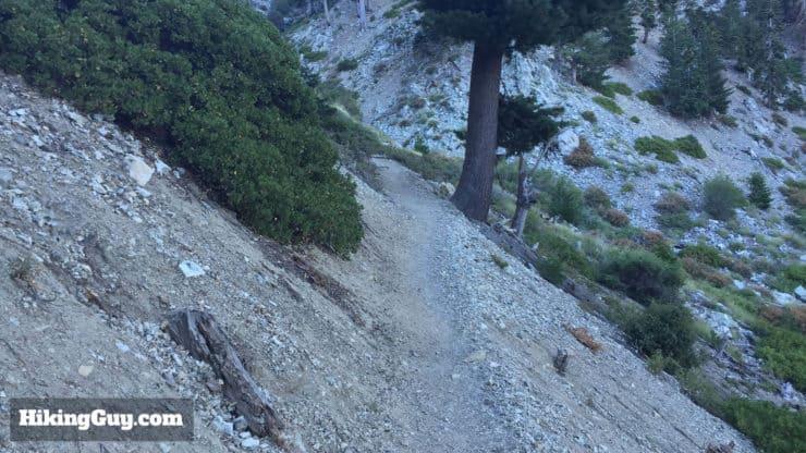 Cucamonga Peak Hike switchbacks