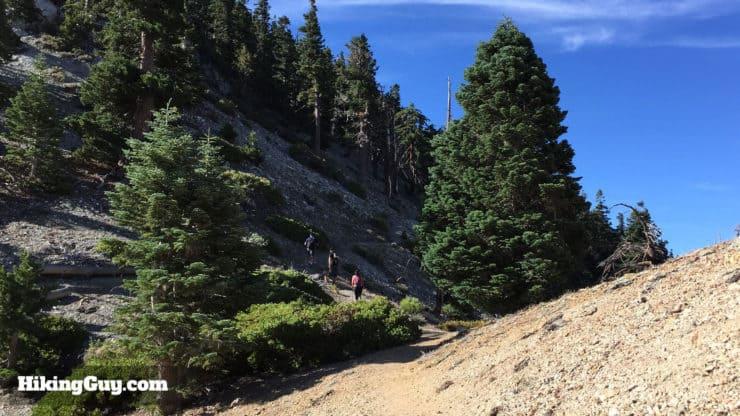 Cucamonga Peak Hike trail climbs