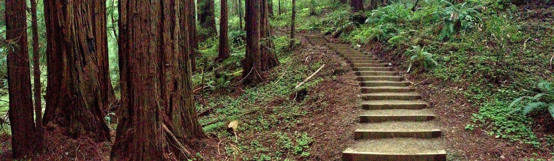 Find a Hiking Trail - HikingGuy com