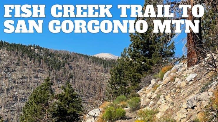 Fish Creek Trail to San Gorgonio Mountain