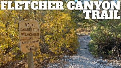 Fletcher Canyon Trail Hike