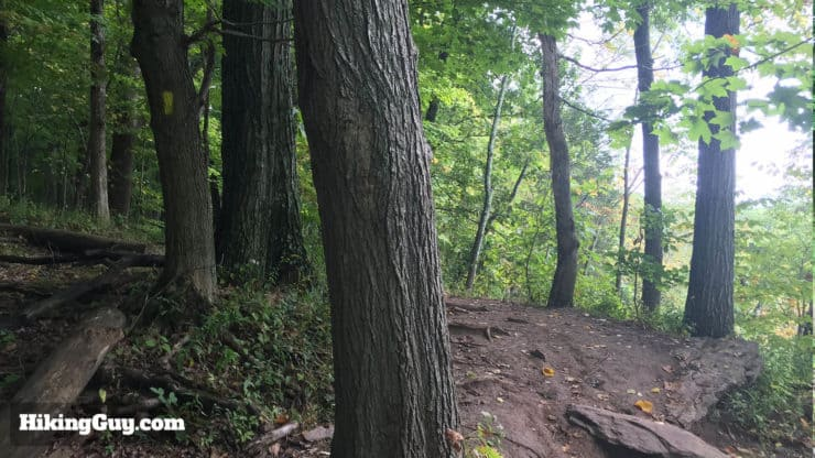 high rocks hike trail descends
