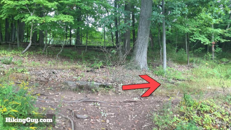 high rocks hike trail goes right