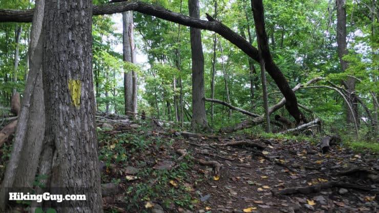 high rocks hike trail start