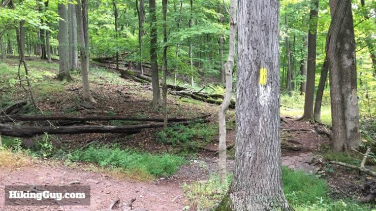 high rocks hike trail yellow blaze