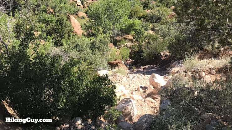 First Creek Canyon trail