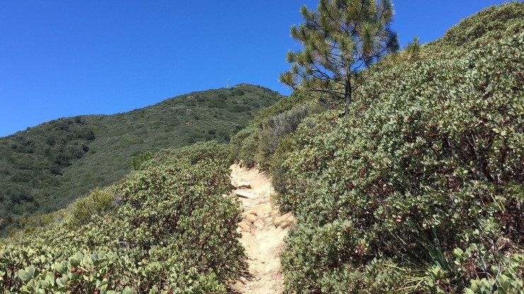 Saddleback Mountain Hike