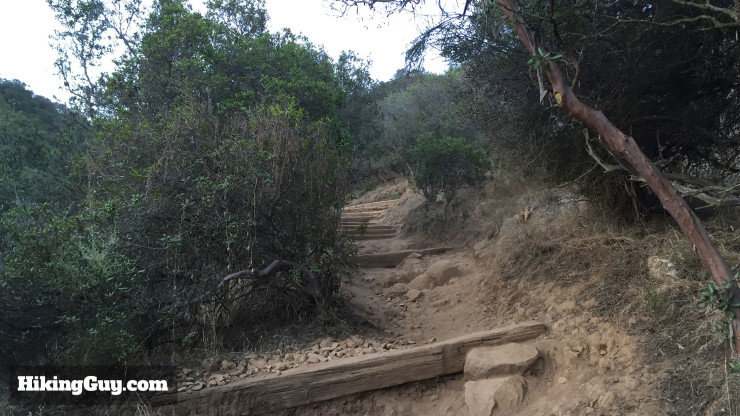 Big Rock trail climbs up a series of stairs