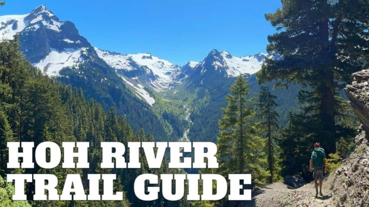 Hoh River Trail to Blue Glacier Hike Guide