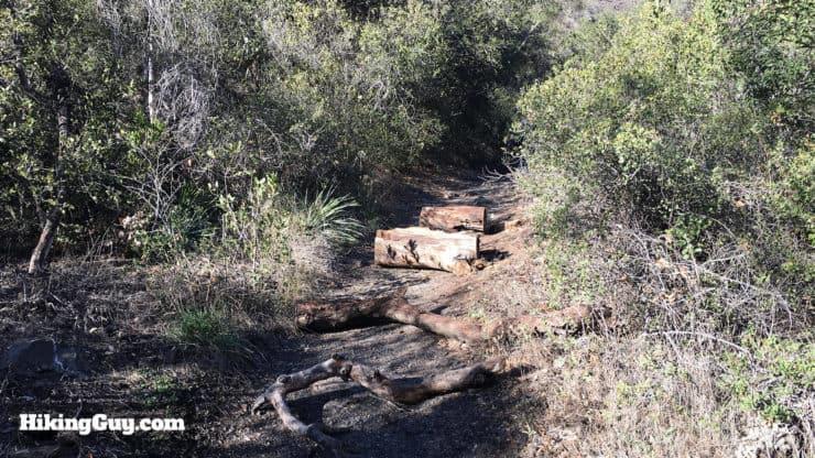 holy jim falls trail