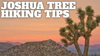Joshua Tree Hiking Tips