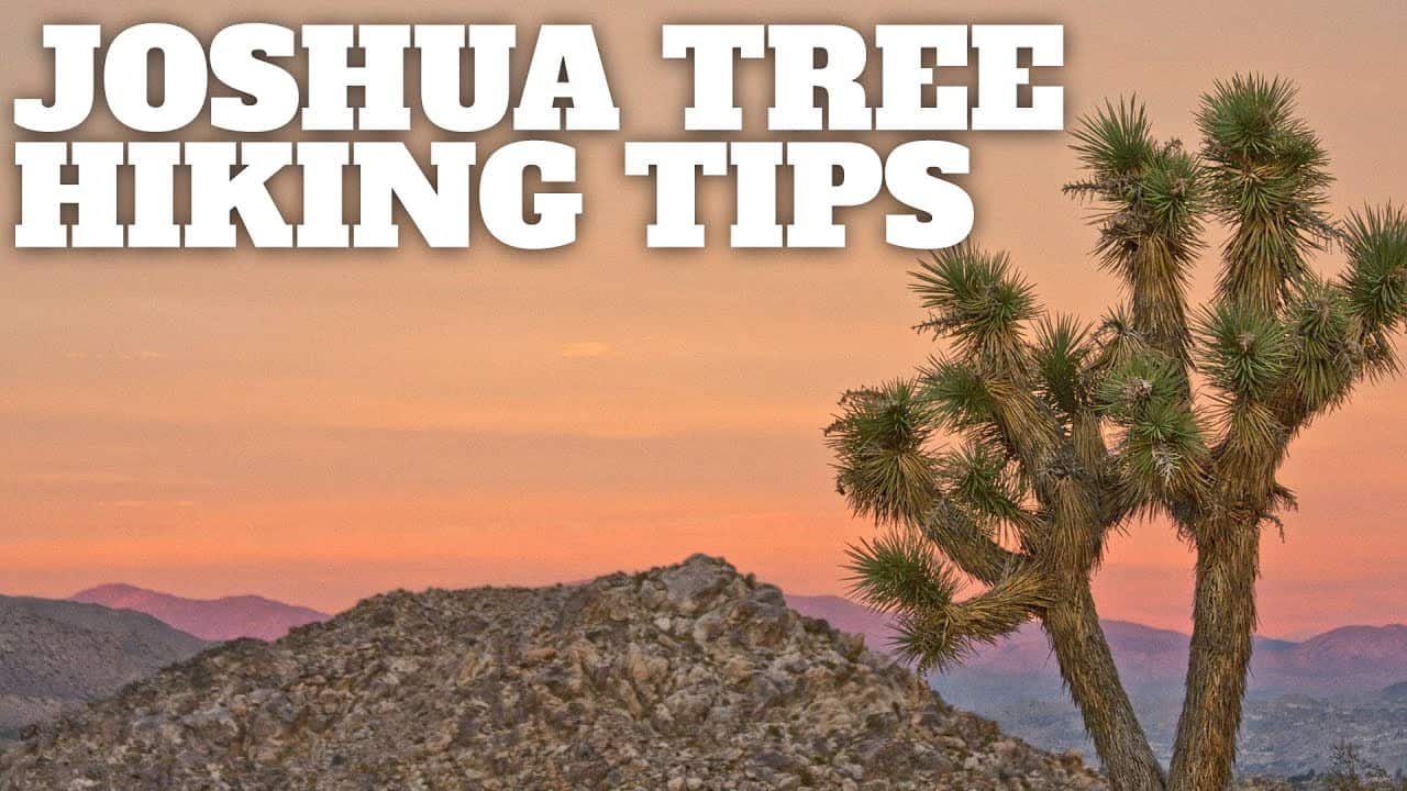 Joshua Tree Hiking Tips Hikingguy Com