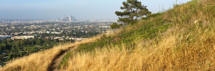 Kenneth Hahn Park Hike