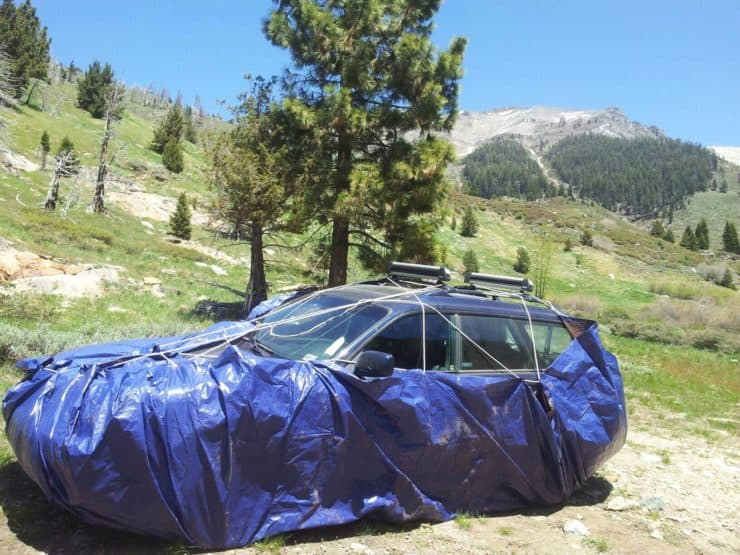 marmot proofed car