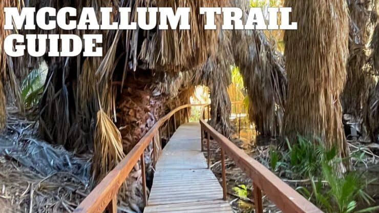 McCallum Trail Hike Guide