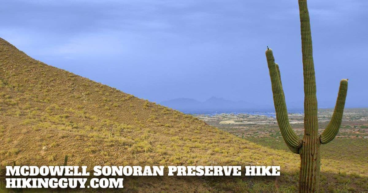 McDowell Sonoran Preserve Hike