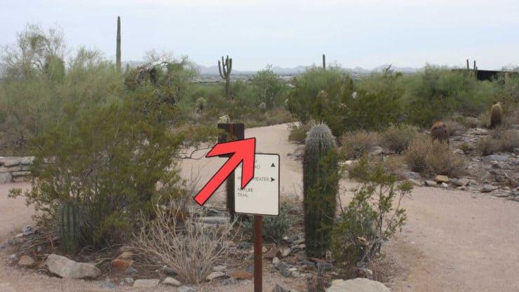 McDowell Sonoran Preserve Hike trail