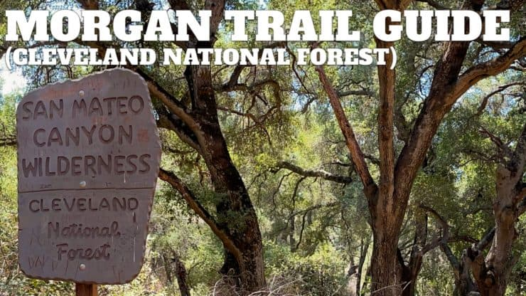 Morgan Trail Hike (Cleveland National Forest)