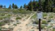 Mount Pinos Hike Directions 11