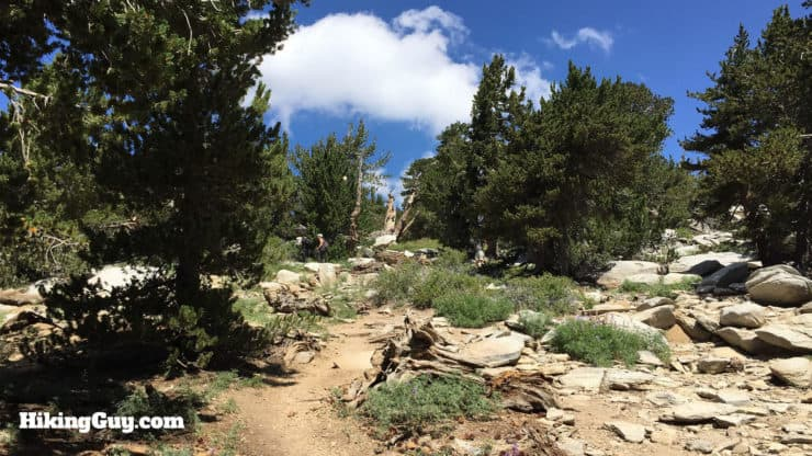 Mount San Jacinto Hike trail