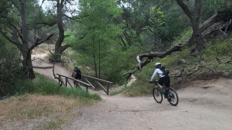 mountain bikers on trail