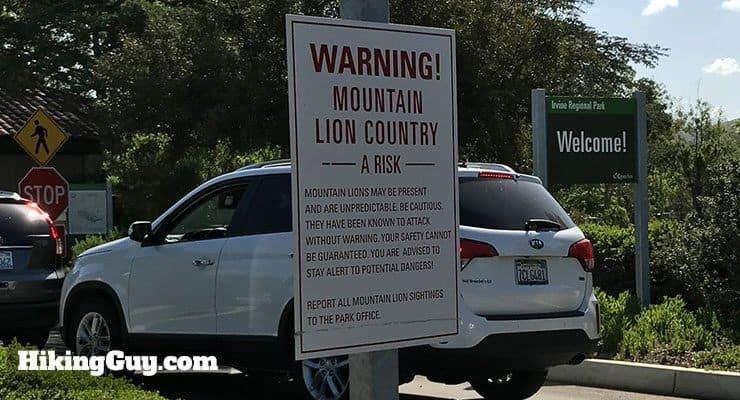 mountain lion sign