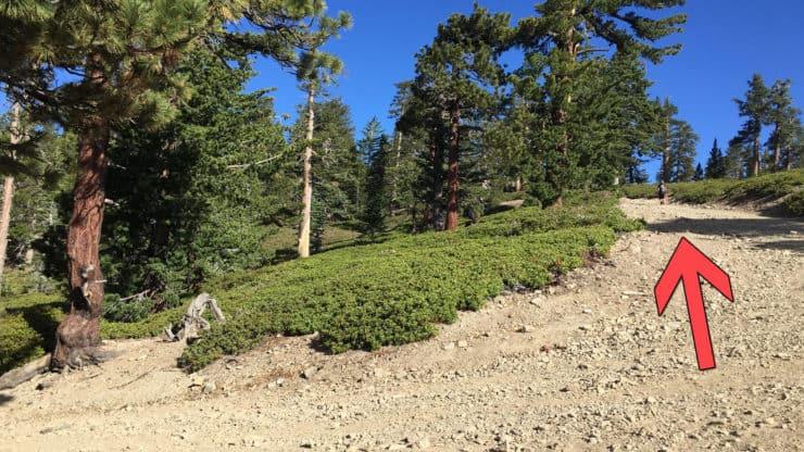 mt baldy hike climbs