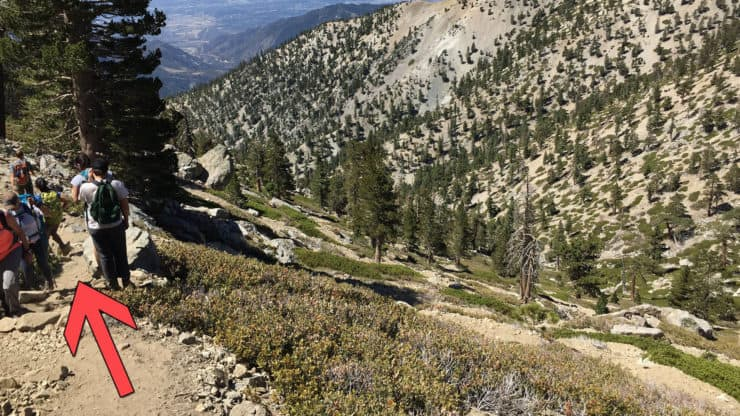 mt baldy hike trail stays left