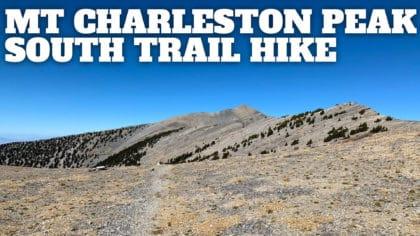Mt Charleston Peak Hike – South Loop Trail