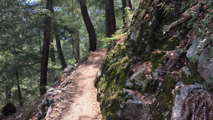 Mt Wilson Hike From Chantry Flat trail