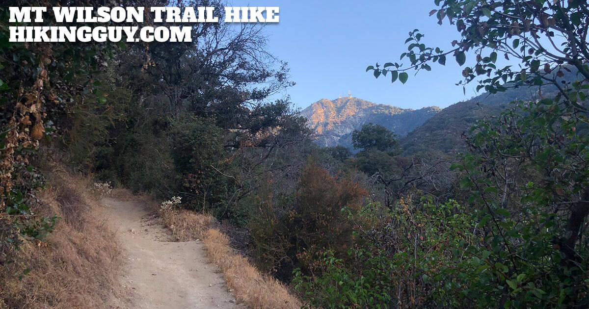 Mt Wilson Trail Hike (2019) - HikingGuy com
