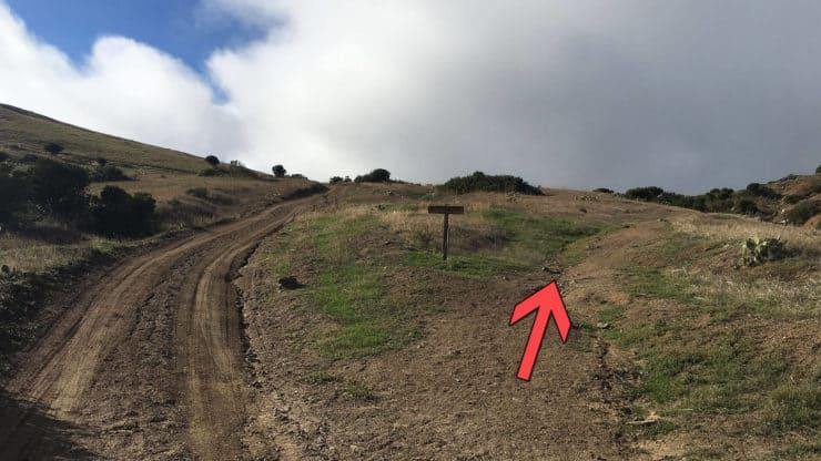 Trans-Catalina Trail