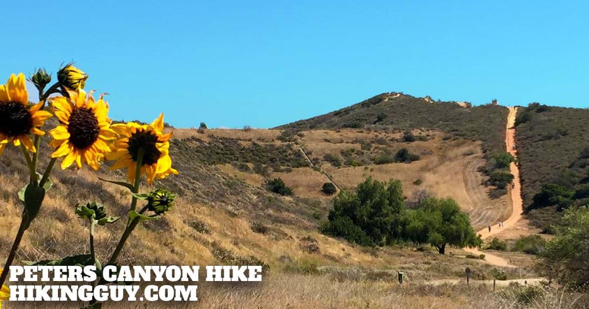 Peters Canyon Hike
