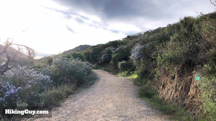 Potato Chip Rock Hike 18
