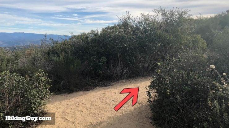 Potato Chip Rock Hike 27