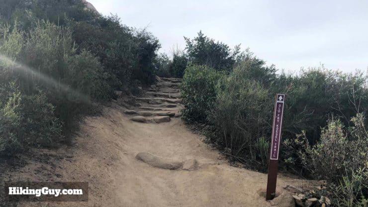 Potato Chip Rock Hike 29