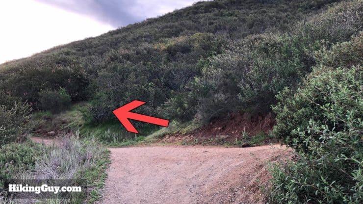 Potato Chip Rock Hike 7