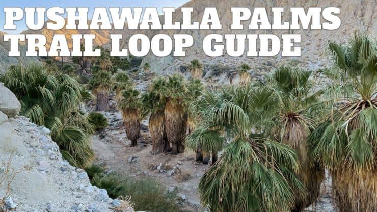 Pushawalla Palms Trail Loop