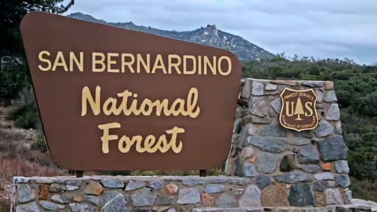 San Bernardino National Forest Hiking Trails
